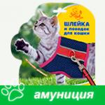 Амуниция для кошек