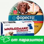 Средства от паразитов для собак
