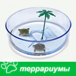 Террариумы для рептилий
