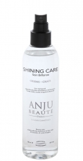 "Anju Beaute Brilliance Shining Spray - спрей ""Ультра-блеск"" (150 мл)"