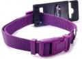 Papillon Nylon collar - нейлоновый ошейник, фиолетовый