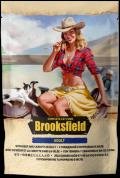 Brooksfield Adult - паучи для кошек с говядиной и морковью в желе (85 г)